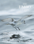 Embo Journal Cover